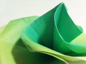 Green Swirl Rose